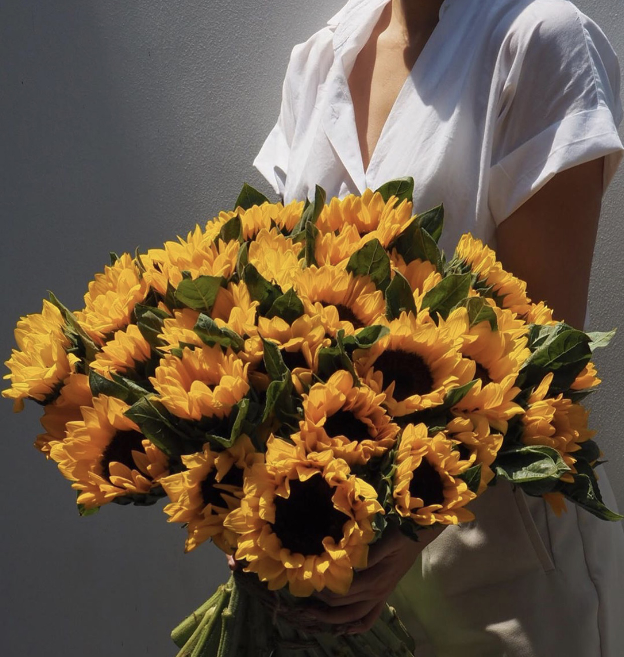 You're my Sunflower